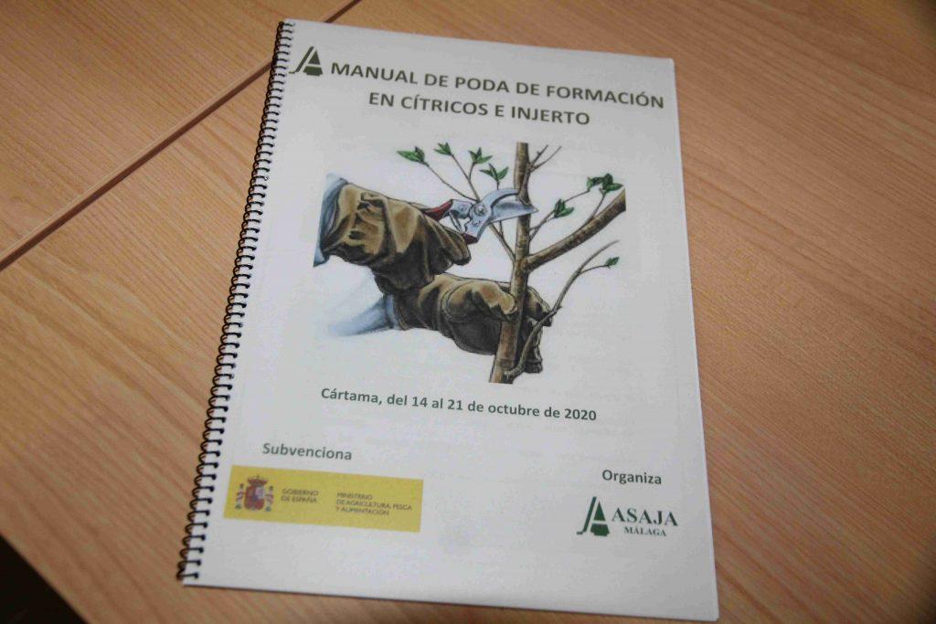 comienzo-curso-poda-e-injerto-citricos-141020-1