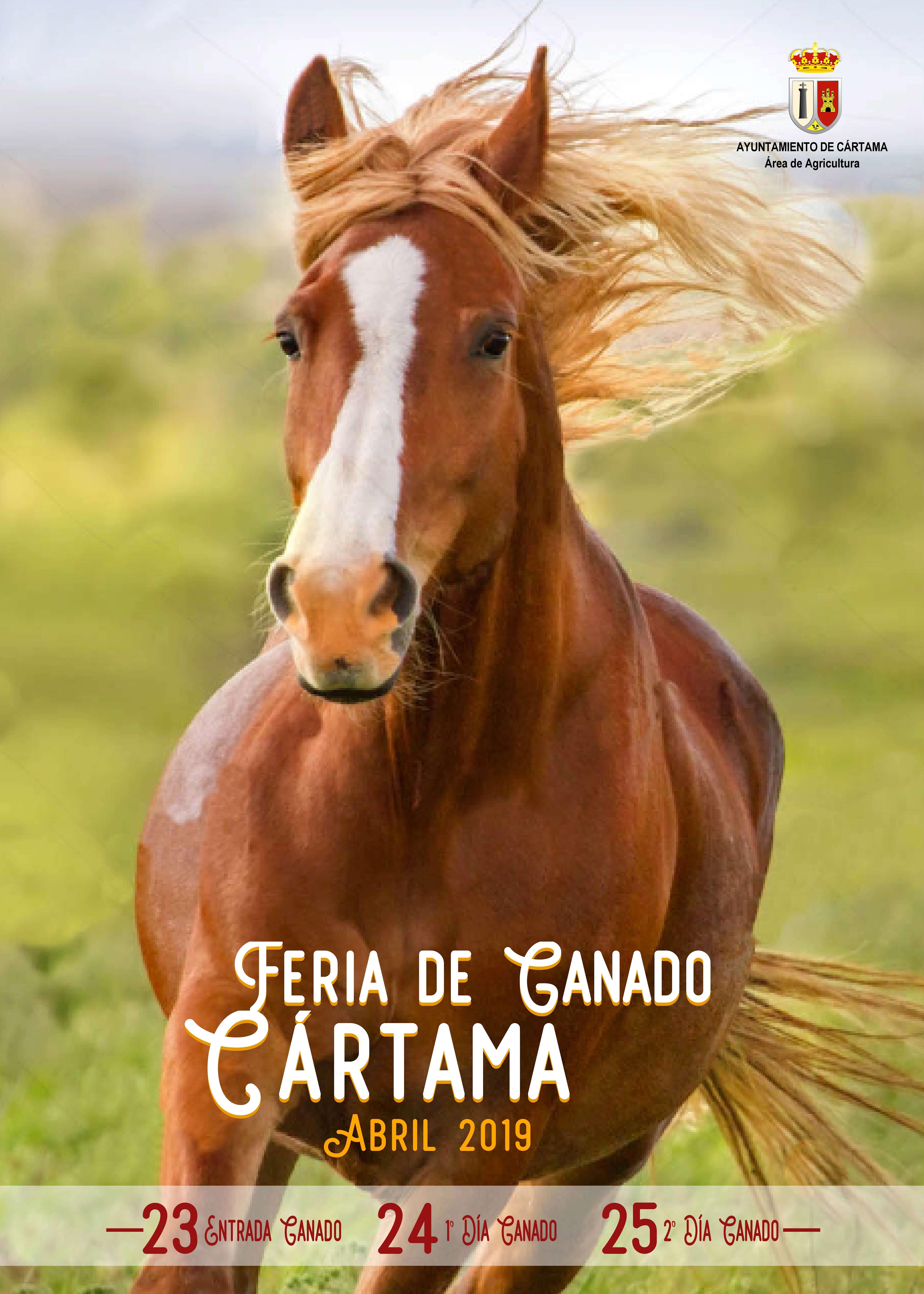 Feria Ganado Cártama 2019