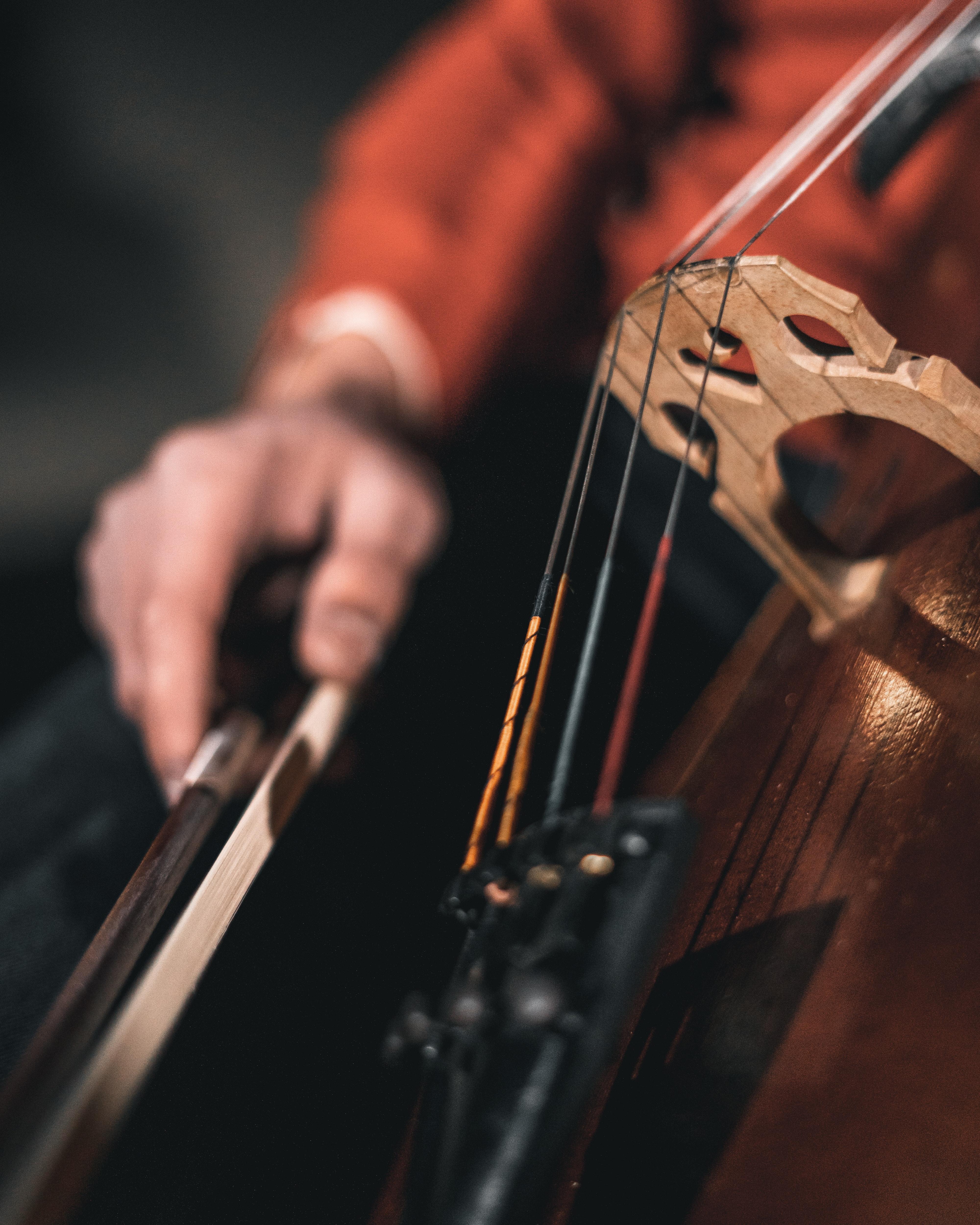 musica-concierto-pexels-quentin-ecrepont-2228466