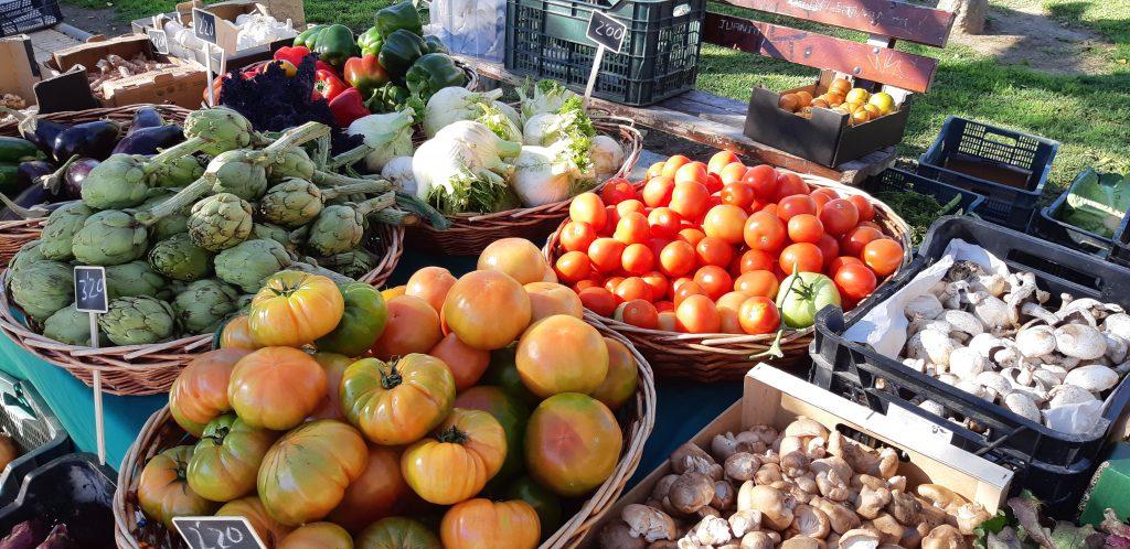 mercado-ecologico-y-artesano-cartamaeco-feb-20-2