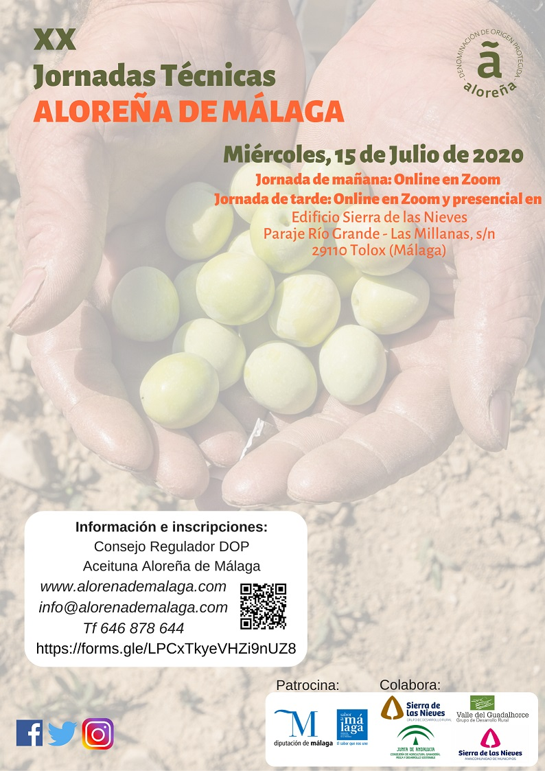 xx-jornadas-alorena_cartel